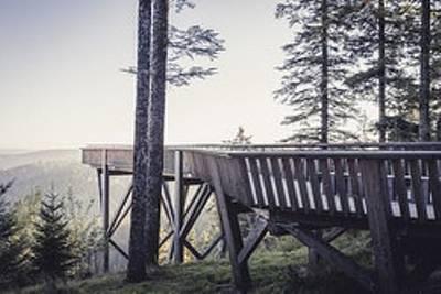 Bild Erlebnis Nationalpark Schwarzwald