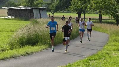 Bild Steinacher Sommer - Abend - Lauf