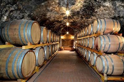 Weinprobe der Oberkircher Winzer eG. (© Oberkircher Winzer)