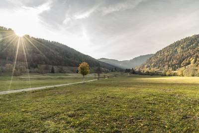 Auf den Spuren des Menzenschwander Heilwassers. (© Hochschwarzwald Tourismus GmbH)