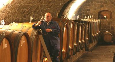Weinprobe mit Kellerfhrung im Weingut Heinrich Mnnle