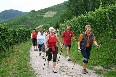 Gefhrte Nordic-Walking Tour Sei fit - walk mit