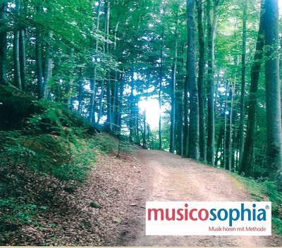 -VORÜBERGEHEND GESCHLOSSEN- Erlebniswelt Musik. (© Musicosophia St. Peter)