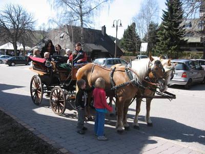 Pferdekutschfahrt für die ganze Familie