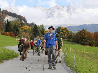 Alpentladung vor dem imposanten Schesaplana. (© Erwin Keller)
