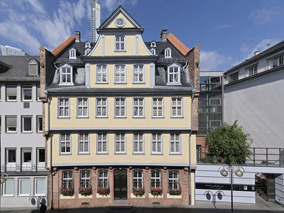 City Walk incl. visit of the Goethe House English