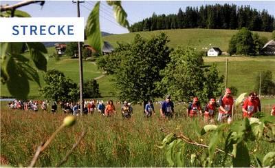 13. Breitnauer Nordic Walking Gipfel