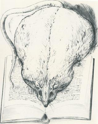 Im Schatten der Schriftstellerei - Günter Grass als bildender Künstler