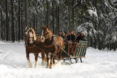 Fackelfahrt mit dem Pferdeschlitten mit Reit- und Kutschtouristik Rainer Ortlepp