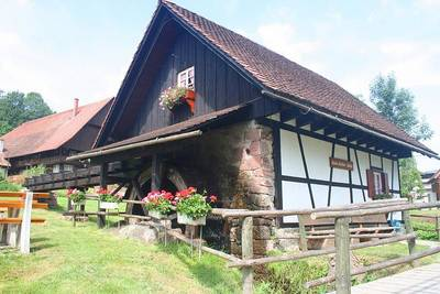 Besichtigung und Vorfhrung der alten Getreidemhle Maile-Gieler-Mhle