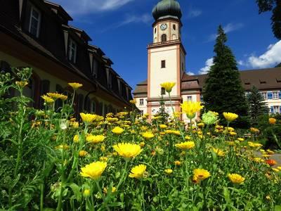 !!!BIS AUF WEITERES ABGESAGT!!! Kirchenführung durch die barocke Pfarrkirche St. Trudpert