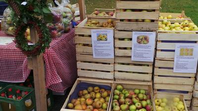 Obst- und Bauernmarkt in Lalling