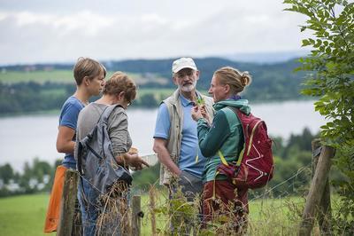 Kruterwanderung auf der Feldwieser Halbinsel