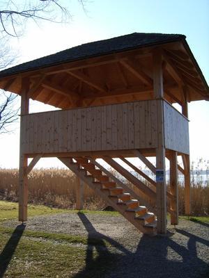 Vogelbeobachtung am Turm Seebruck