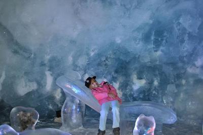 Les plaisirs estivaux de Wolli - Période glaciaire au palais de glace