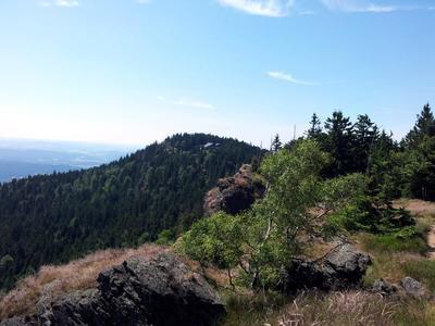 GOLDSTEIG-Schnupper-TOUR - DIE Erlebnistour im Bayerischen Wald  ...