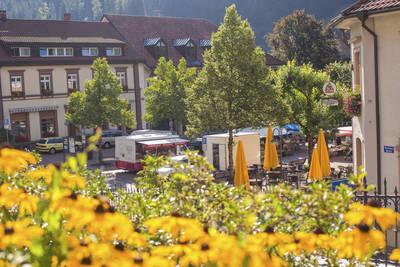 Marktplatz Todtnau. (© Hochschwarzwald Tourismus GmbH)
