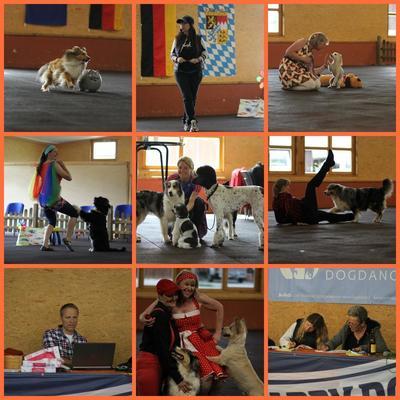 15. Ammertaler Dogdance Turnier