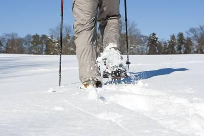 Albguide-Tour Schneeschuhwandern auf der Hochfläche des Lochenhörnle