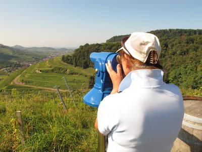 Wandern mit dem Schätzle Genussrucksack durch die Grand Cru Vulkan-Lage Kirchberg