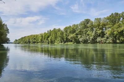 ABGESAGT - geführte eBike-Touren: Rheintal mit Petite Camargue. (© Bade- und Kurverwaltung Bad Bellingen GmbH)