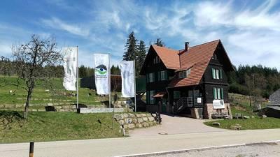 Interner Link zur Veranstaltung: Tannengrün & Apfelrot - Adventsdeko selber machen
