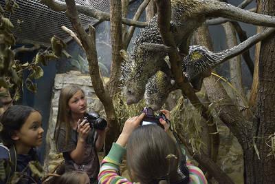 Children photo workshop with wildlife photographer Detlef MöbiusDetlef Möbius. (© Children photo workshop with wildlife photographer Detlef Möbius)