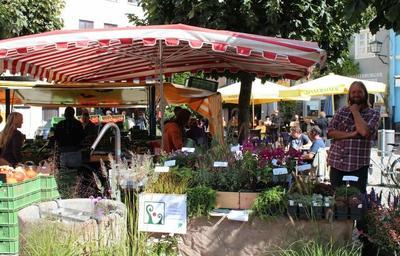 Wasserburger Bauernmarkt