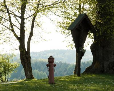 Die Poesie des Hydranten  Franz Hintermann