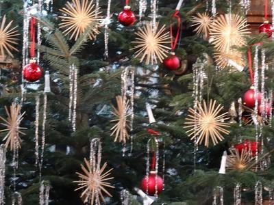 Grassauer Weihnacht - die Weihnachtsgschicht gsunga & gspuit