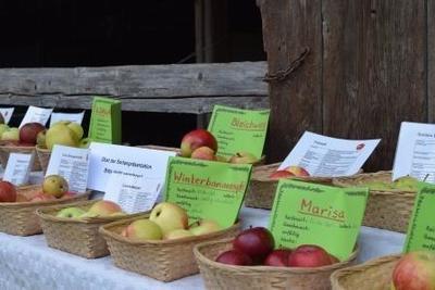 Herbstzeit – Apfel- und Erntetag
