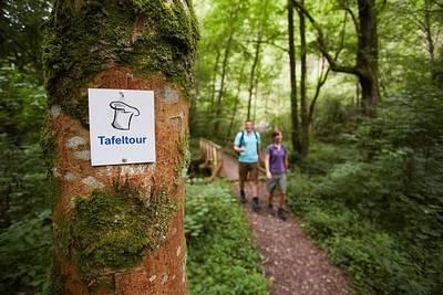 Wandern, Wein und Kulinarisches auf der Saarschleife Tafeltour. (©  Tourismus Zentrale Saarland)