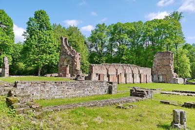Kräuterwanderung auf der Klosterruine