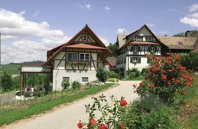 Bild Hoffest auf dem Weingut Huber in Durbach