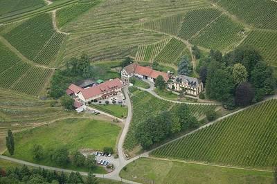 Bild Herbstfest im Weingut Freiherr von Neveu