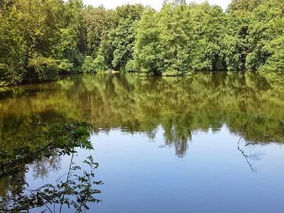 MTB Angebot - Seentour im Hohen Habichtswald
