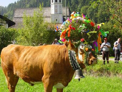 Groes Almabtriebsfest im Bergsteigerdorf Sachrang
