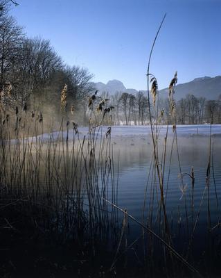 Winterzauber Hexennacht im Moor
