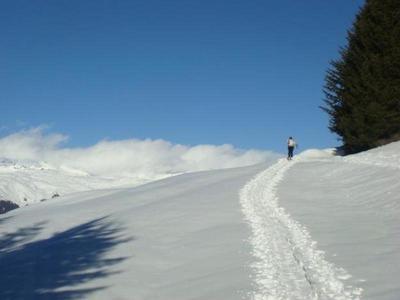 Schneeschuhwanderung in der Surselva