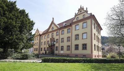 Elztalmuseum Regionalgeschichte und Orgelbau