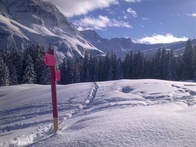 Schneeschuhweekend und Yoga in BreilBrigels