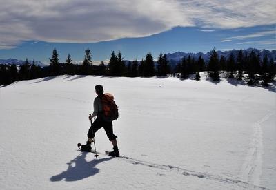 Schneeschuhwanderung - Schreckalm