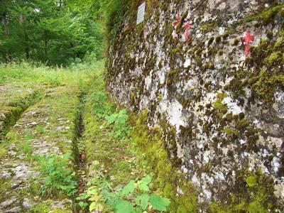 Albguide-Tour Die Geschichte einer Wegspur