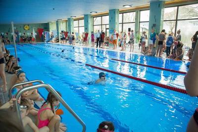 Vereinsmeisterschaft der Schwimmabteilung im TSV Bernau