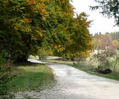 Albguide-Tour Auf Entdeckungstour im Bereich des Onstmettinger Raichberges