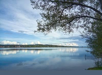 Meditative Naturbetrachtung auf der Mettnau