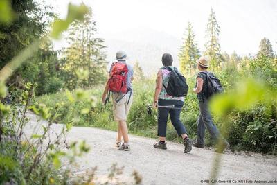 Alm- und Waldwanderung
