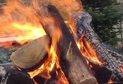 Stockbrot und Geschichten am Lagerfeuer - Familienveranstaltung