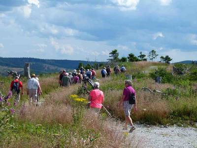Wandern im Sauerland. (© Tourist-Information Bestwig)