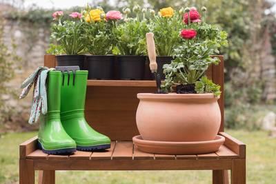 Garten planen, gestalten, weiterentwickeln